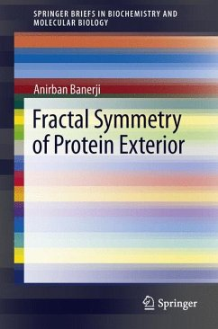 Fractal Symmetry of Protein Exterior