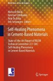 Self-Healing Phenomena in Cement-Based Materials