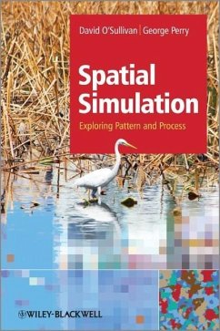 Spatial Simulation: Exploring Pattern and Process - O'Sullivan, David; Perry, George L. W.