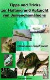 Tipps und Tricks zur Haltung und Aufzucht vom Jemenchamäleon (eBook, ePUB)