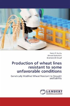 Production of wheat lines resistant to some unfavorable conditions