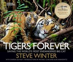 Tigers Forever - Winter, Steve