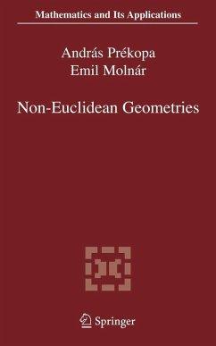 Non-Euclidean Geometries (eBook, PDF)