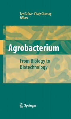 Agrobacterium: From Biology to Biotechnology (eBook, PDF)