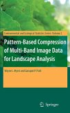 Pattern-Based Compression of Multi-Band Image Data for Landscape Analysis (eBook, PDF)