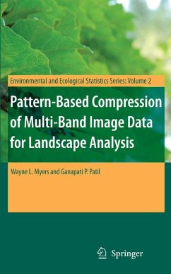 Pattern-Based Compression of Multi-Band Image Data for Landscape Analysis (eBook, PDF) - Patil, Ganapati P.; Myers, Wayne L.