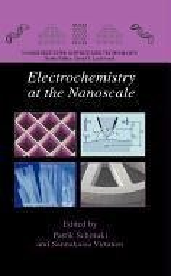Electrochemistry at the Nanoscale (eBook, PDF)