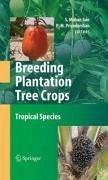 Breeding Plantation Tree Crops: Tropical Species (eBook, PDF)