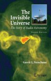 The Invisible Universe (eBook, PDF)