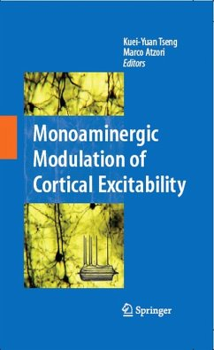 Monoaminergic Modulation of Cortical Excitability (eBook, PDF)