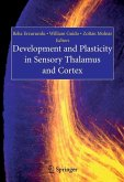 Development and Plasticity in Sensory Thalamus and Cortex (eBook, PDF)