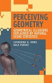 Perceiving Geometry (eBook, PDF)