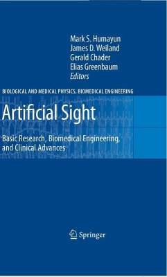 Artificial Sight (eBook, PDF)