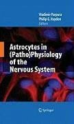 Astrocytes in (Patho)Physiology of the Nervous System (eBook, PDF)