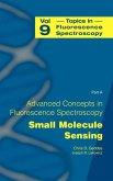 Topics in Fluorescence Spectroscopy (eBook, PDF)