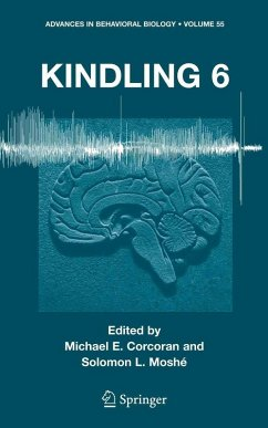 Kindling 6 (eBook, PDF)