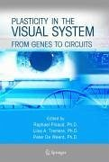 Plasticity in the Visual System (eBook, PDF)