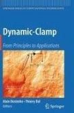 Dynamic-Clamp (eBook, PDF)