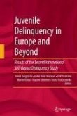 Juvenile Delinquency in Europe and Beyond (eBook, PDF)