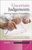 Uncertain Judgements (eBook, PDF)