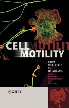 Cell Motility (eBook, PDF)