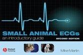 Small Animal ECGs (eBook, PDF)