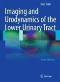 Imaging and Urodynamics of the Lower Urinary Tract (eBook, PDF)