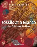 Fossils at a Glance (eBook, PDF)