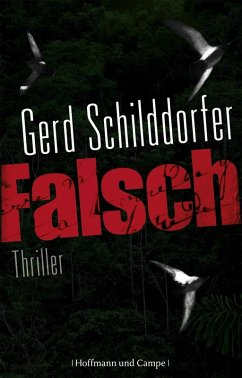 Falsch / John Finch Bd.1 (eBook, ePUB)