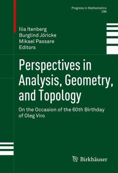 Perspectives in Analysis, Geometry, and Topology (eBook, PDF)