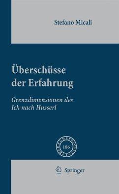 Überschüsse Der Erfahrung (eBook, PDF) - Micali, Stefano