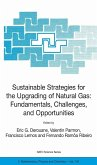 Sustainable Strategies for the Upgrading of Natural Gas: Fundamentals, Challenges, and Opportunities (eBook, PDF)