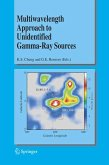 Multiwavelength Approach to Unidentified Gamma-Ray Sources (eBook, PDF)