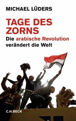 Tage des Zorns (eBook, ePUB) - Lüders, Michael