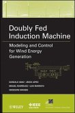 Doubly Fed Induction Machine (eBook, PDF)