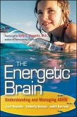 The Energetic Brain (eBook, ePUB)