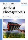 Artificial Photosynthesis (eBook, PDF)