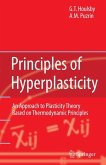 Principles of Hyperplasticity (eBook, PDF)