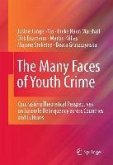 The Many Faces of Youth Crime (eBook, PDF)
