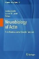 Neurobiology of Actin (eBook, PDF)