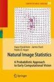 Natural Image Statistics (eBook, PDF)