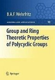 Group and Ring Theoretic Properties of Polycyclic Groups (eBook, PDF)