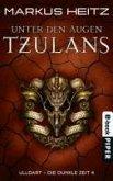 Unter den Augen Tzulans / Ulldart - die dunkle Zeit Bd.4 (eBook, ePUB)