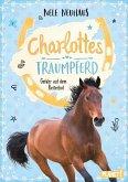 Gefahr auf dem Reiterhof / Charlottes Traumpferd Bd.2 (eBook, ePUB)