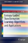 Entropy Guided Transformation Learning: Algorithms and Applications (eBook, PDF)