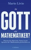 Ist Gott ein Mathematiker? (eBook, ePUB)