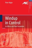 Windup in Control (eBook, PDF)