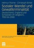 Sozialer Wandel und Gewaltkriminalität (eBook, PDF)