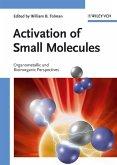 Activation of Small Molecules (eBook, PDF)