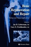 Bone Regeneration and Repair (eBook, PDF)